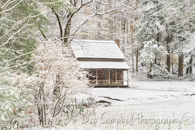Henry Whitehead Cabin Snow