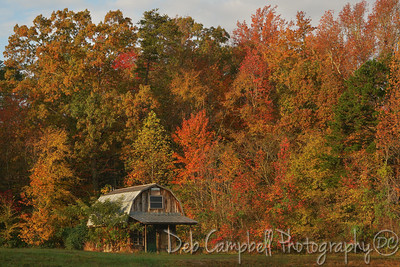 Little Shack in the Fall colors
