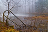130113-PA_Fog-036