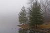 130113-PA_Fog-005