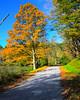 Bass Lake Price Lake Blue Ridge Parkway (13 of 20)