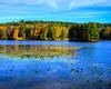 Bass Lake Price Lake Blue Ridge Parkway (8 of 20)