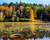 Bass Lake Price Lake Blue Ridge Parkway (4 of 20)