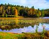 Bass Lake Price Lake Blue Ridge Parkway (3 of 20)