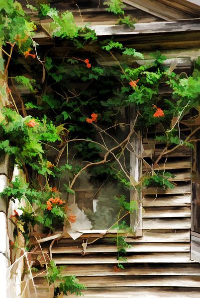 04 Bates-Geers House On Slabtown Rd (topaz buzsim)