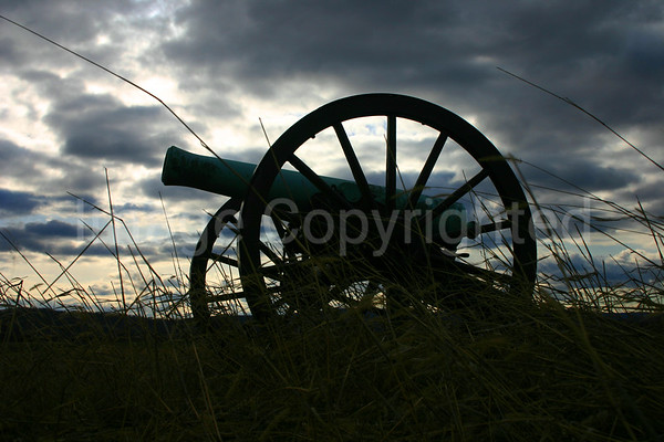 Cannon among the grass