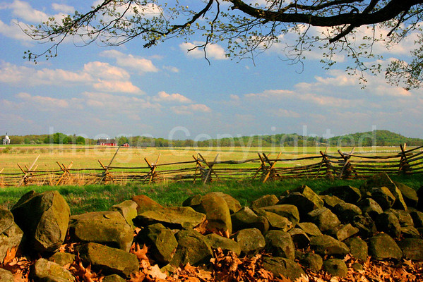 McMillian Woods Fence Line in Gettysburg