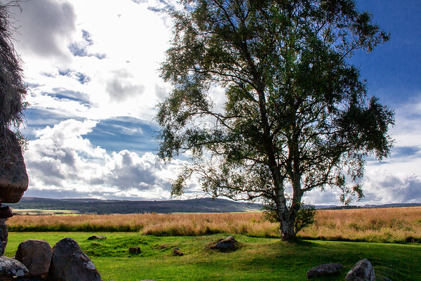 View from the Leanach cottage at the Culloden Battlefield, Scotland.