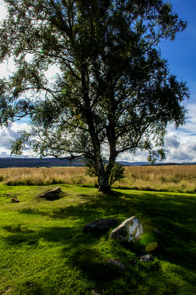 View from the Leanach cottage of the Culloden Battlefield, Scotland.