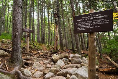 Maine Wilderness