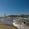 Walking the dog at Crissy Field.