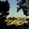 Coit Tower and North Beach basking in the golden glow of the afternoon sunlight.