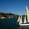 Sailing past Tiburon.
