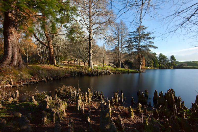 McClaren Falls Park