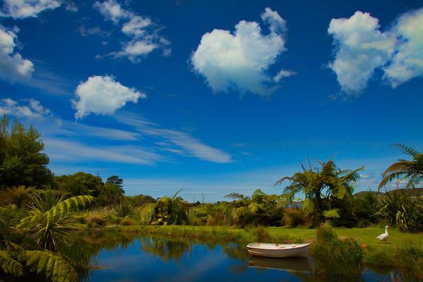 Bay of Plenty Landscapes
