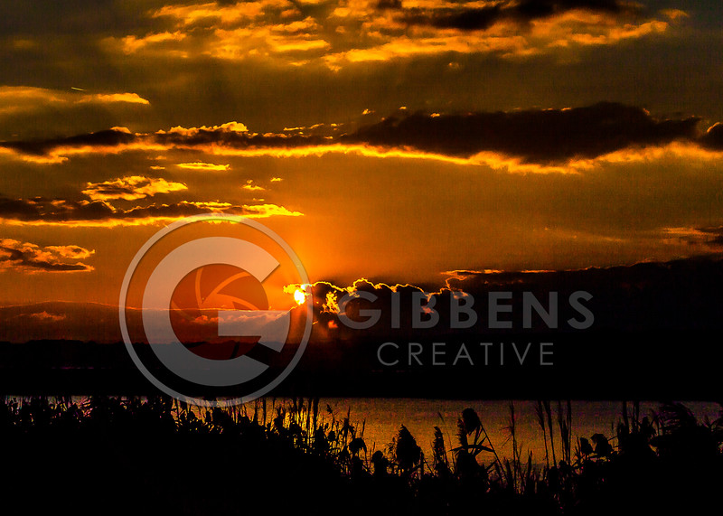 South Pier Sunrise