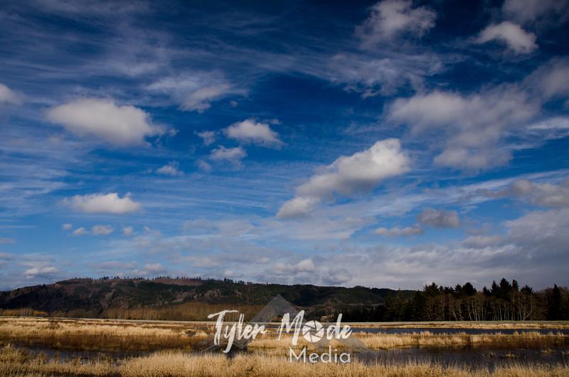 13  G Blue Skies