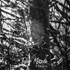 524  G Discovery Trail Sun Spiderweb BW