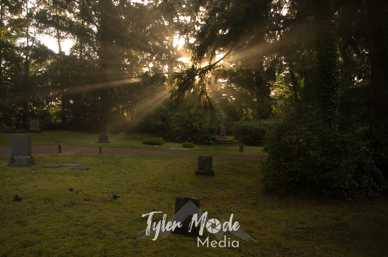 96  G Oysterville Cemetery Rays