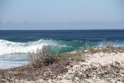 Seaglass Dunes
