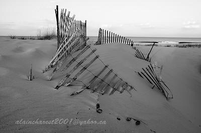 Sand Fence Beach
