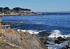 Pacific Grove 4