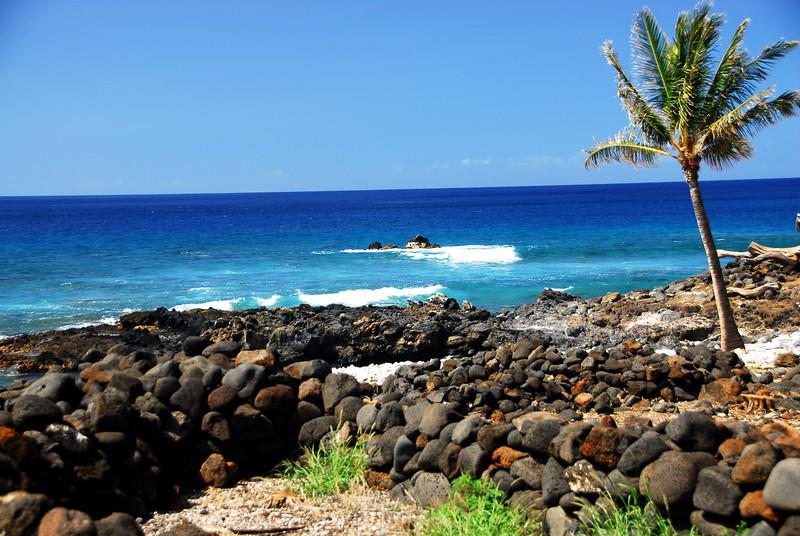 Surf I - Kona, Hawaii  2007