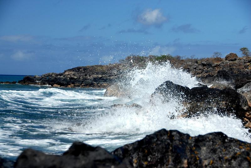 Surf III - Kona, Hawaii 2008