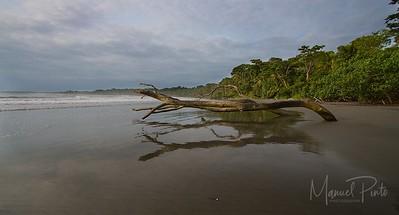 Punta Mona -  Gandoca
