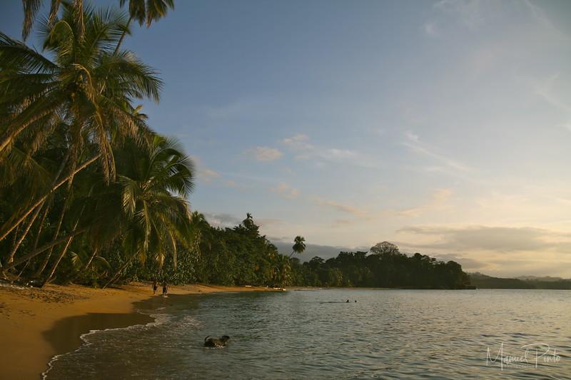 Punta Uva Beach late afternoon