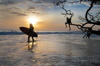 Sunset surf and ponder
