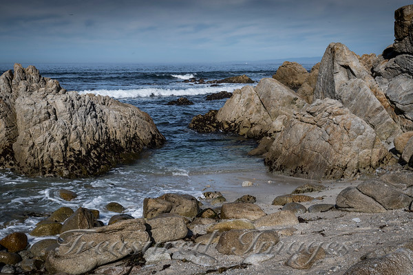 Pacific Grove CA Coast