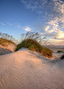 The light and shadows on this dune were inspirational. Taken on Pea Island National Wildlife Reserve in Hatteras, NC.
