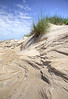 "Pea Island National Wildlife Refuge just south of the bonner bridge. This Dune was cut by the 60mph winds from an offshore storm. The ""carved  sand"" is capture here."