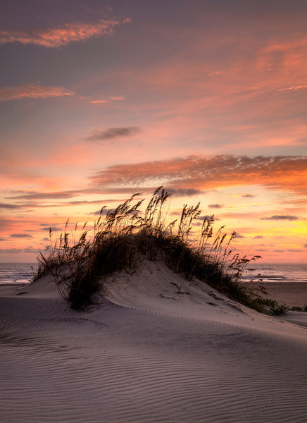 Dawn on a picturesque Dune on Hatteras Island North Carolina.