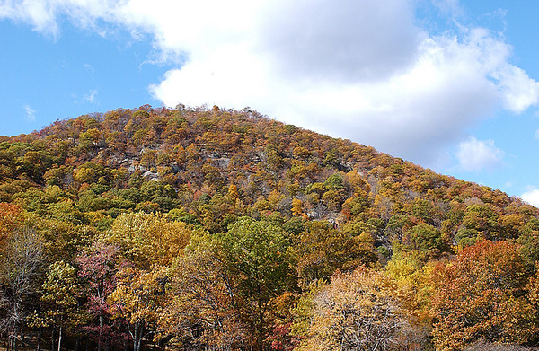 Bear Mountain and Palisades