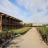 Okanagan / West Kelowna - Quail's Gate Estate Winery.