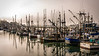 Fishing vessels on Yaquina Bay, Newport, OR, USA
