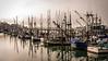 Fishing vessels on Yaquina Bay, Newport, OR, USA