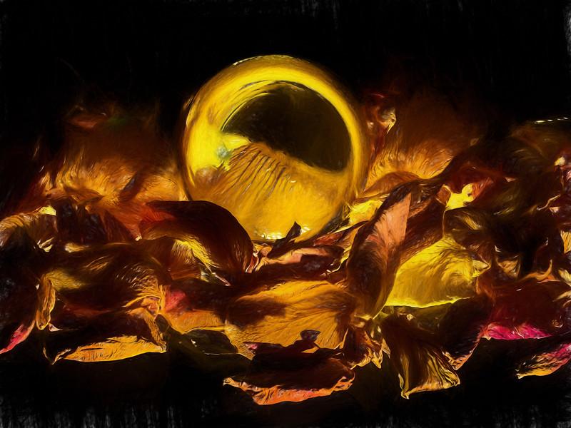 Kendralla Photography-Reflective Sphere-Edit-Edit