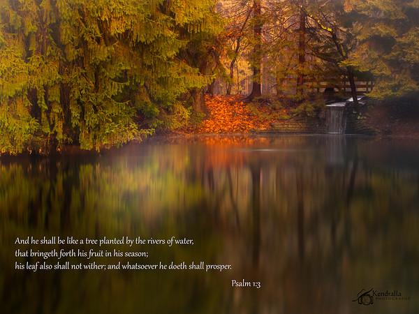 Kendralla Photography-OMD10009-Edit-Edit