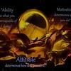 Kendralla Photography-Reflective Sphere-Edit-Edit-Edit-Edit