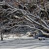 Kendralla Photography_Snow_Lake-OMD18600-Edit