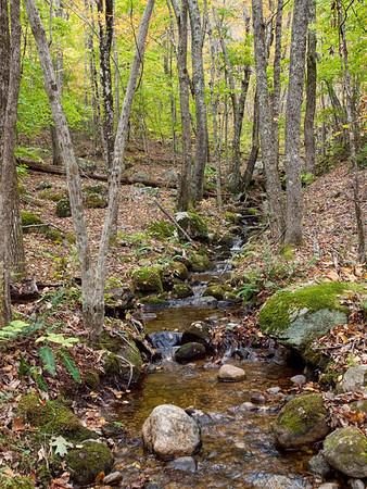 Ben Utter Trail