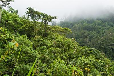 Biodiversity Group, IMGP3972