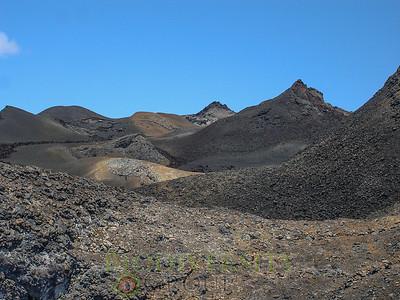 Biodiversity Group, SierraNegra_Landscape7