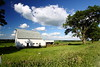 IMG_0890Mindy Ritchie Farm