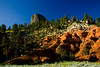 Devils Tower with Red Rocks