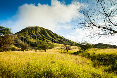 Koko Crater in the Clouds