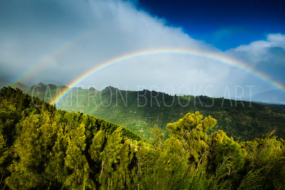 Hawaii Loa Ridge Rainbows